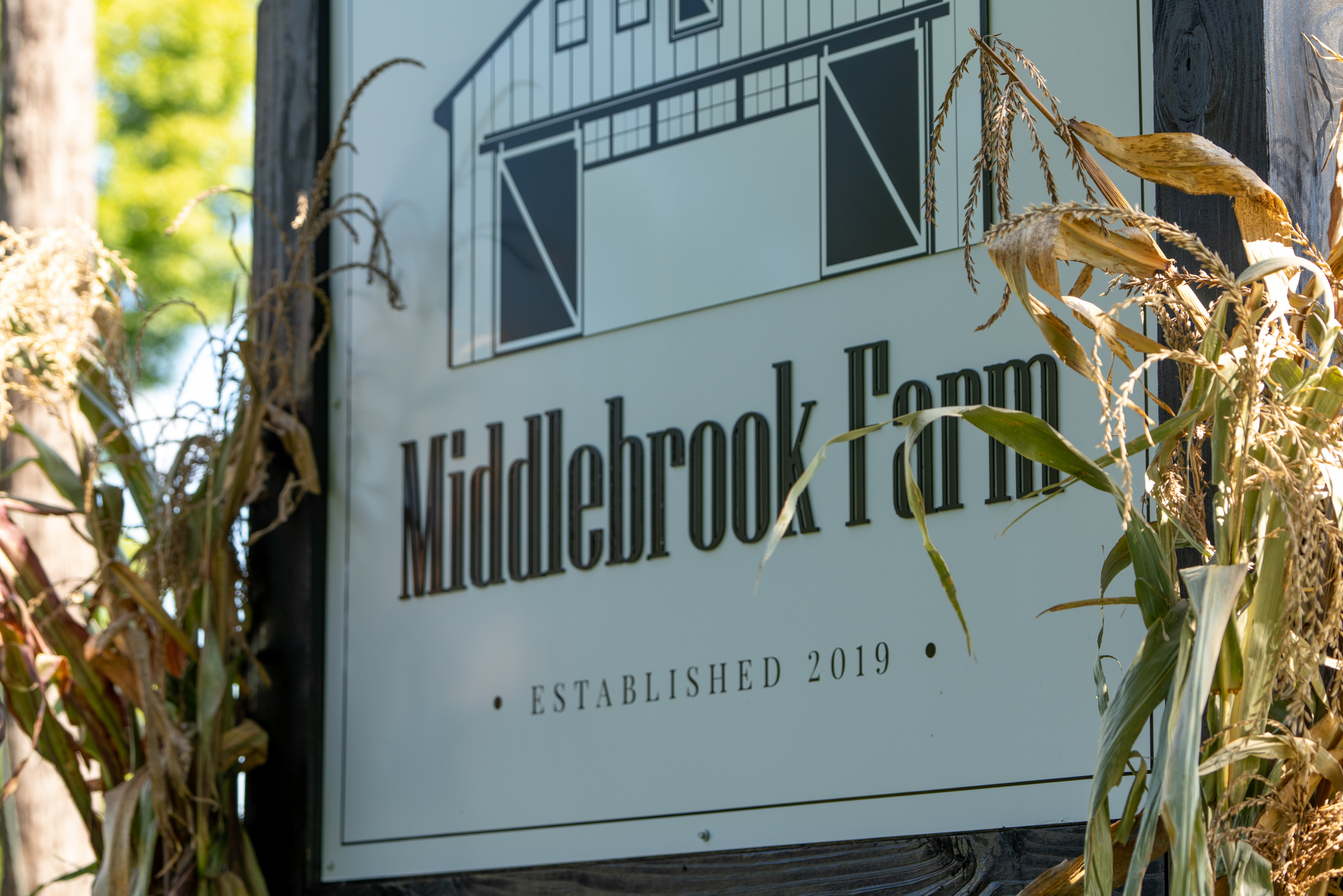 Middlebrook Sign